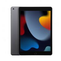 Apple iPad 10.2 2021 Wi-Fi 256GB Space Gray (MK2N3)