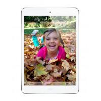 Apple iPad mini Wi-Fi 64 GB White (MD533) фото 2