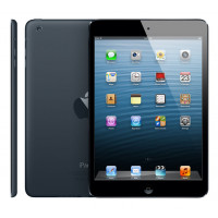 Apple iPad mini Wi-Fi 16 GB Black (MD528, MF432) фото 2