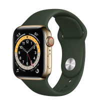 Apple Watch Series 6 GPS + Cellular 40mm Gold Stainless Steel Case with Cyprus Green Sport Band (M02W3, M06V3)
